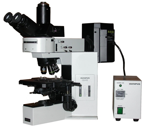 Olympus Bx Microscope : Microscopes for sale