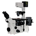 inverted microscopes