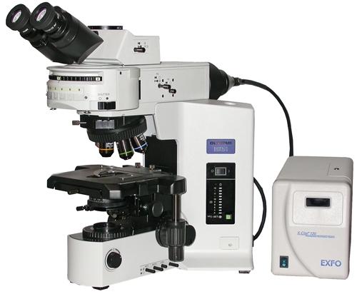 Olympus bx fluorescence microscope