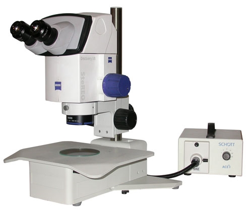 Zeiss Discovery V8 Stereo Zoom Microscope